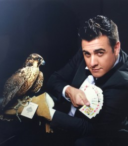 OLMAC avec un faucon
